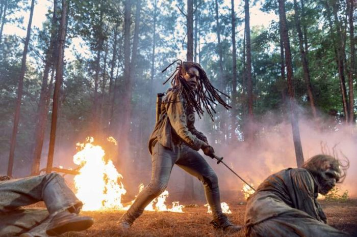 The Walking Dead – Season 10, Episode 1 (Lines We Cross)