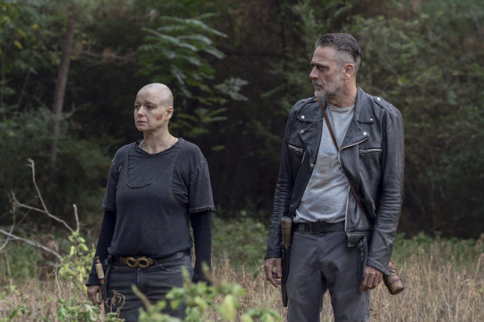 The Walking Dead: Season 10, Episode 12 (Walk with Us)